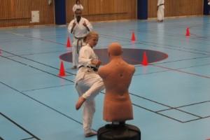 Utövar karate utan kroppskontakt