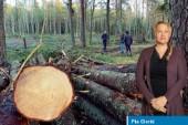 Norrbotten behöver skog, inte fler naturreservat