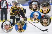 Hockeybilagan 2020: Spelare som Skellefteå AIK förädlat genom åren