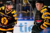 Albin Lundin och Arvid Söderblom ska sommarblogga på Hockeyallsvenskans hemsida.