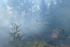 Brandflyg vattenbombade skogsbrand i Boxholm