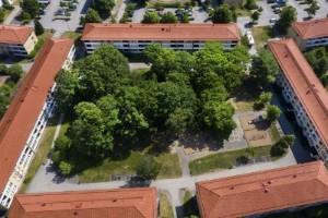 Linköpings dolda rum: Innergården som blev vild