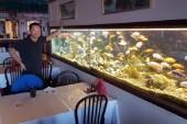 Luleåfrågan: Har ni ett bord vid akvariet?